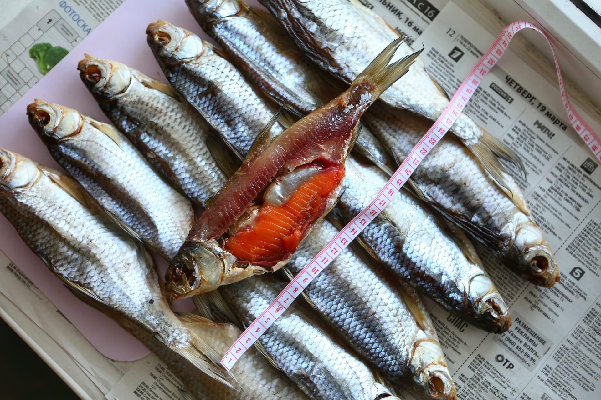 кейс Продвижение магазина астраханской рыбы